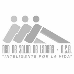 Logo REDSL